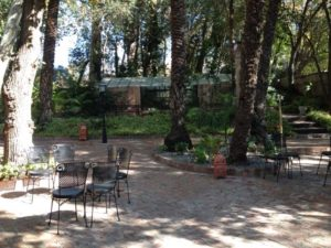 Grounds at Hacienda Del Alamo Outside of Malaga, Spain